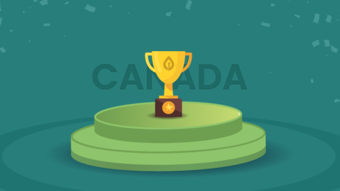 Always Choose Inexpensive SEO Canada Servicess